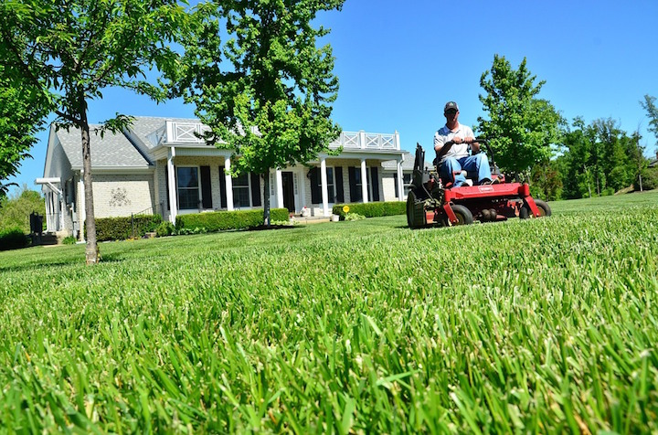 Lawn Care: The Ultimate Guide   Find Lawn Care Near You ...