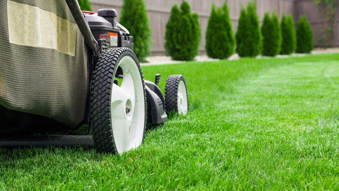 The History of Lawn Care